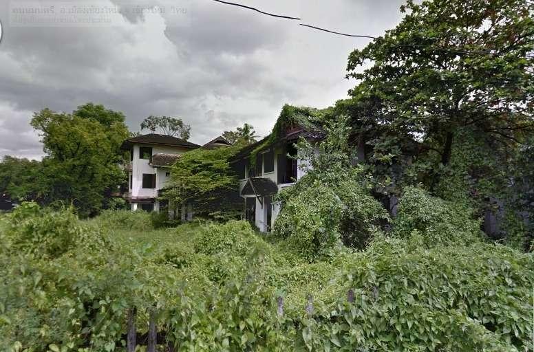 House in green vegetation